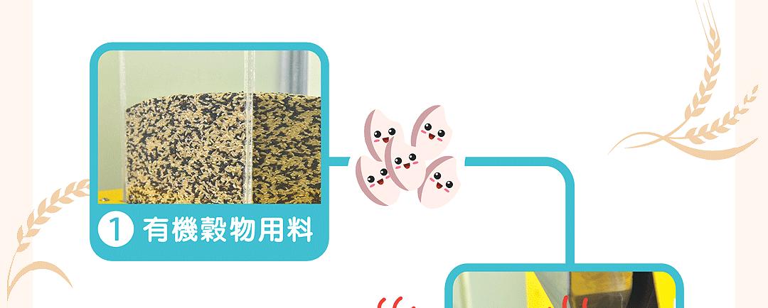 有機巴西蘑菇米餅(銳利)_14